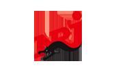 nrj-logocouleur - partenaires des aigles de nice