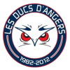 les ducs anger hockey